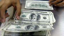 دولت جلوی خروج ارز را بگیرد