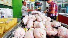 صادرات بی فایده مرغ/ عراق و افغانستان پول ایران را با ریال پس میدهند