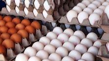 شرط رسیدن تخم مرغ به قیمت ۳۲ هزار تومان
