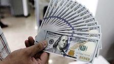 دلار در آستانه 8000 هزار تومان!