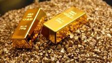 احمدی مطرح کرد: ادامه روند کاهش نرخ طلا در بازار
