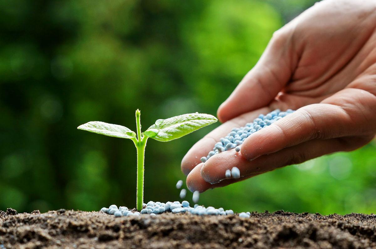 خبر خوش جهاد کشاورزی به کشاورزان