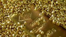 رشد ماهانه قیمت طلا رکورد جدید زد