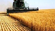 اسامی دریافت کنندگان ماشین آلات کشاورزی موجود است/افزایش قیمت ۴۰۰ درصدی کذب است