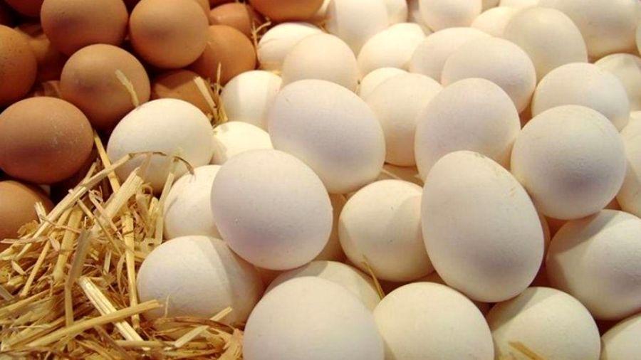 تخم مرغ شانهای ۳۵ هزار تومان!