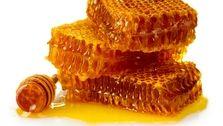 واردات ۲۵۶ هزار دلاری موم زنبور عسل به کشور