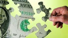 از سیاست ارزی دولت حمایت میکنیم