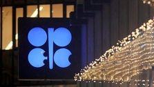 اوپک: کرونا تقاضا برای نفت را کمتر میکند