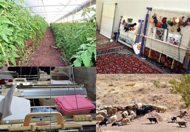 انحراف جدی در طرح اشتغال روستایی/ ۲۴۰۰نفر ۴۴درصد منابع را بلعیدند