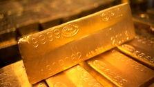 واردات طلا با مجوز بانک مرکزی مجاز است
