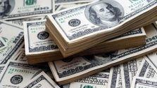 رهگشای گفت : دلار از نظام تجاری ایران کنار گذاشته شود