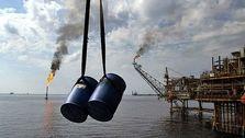 نفت گرانتر شد