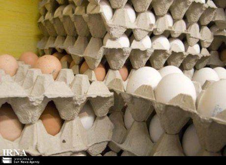دلیل گرانتر بودن تخم مرغهای قهوه ای