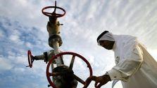 تولید نفت عربستان افزایش یافت