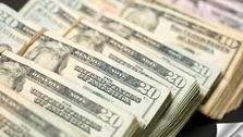 نرخ طلایی دلار در اقتصاد ایران چند است؟