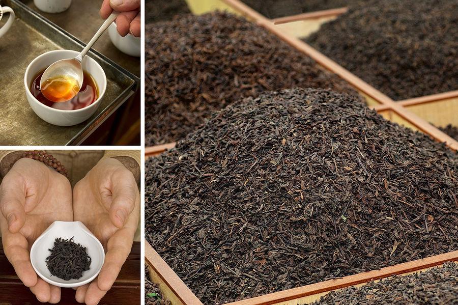 نگرانی کنیا از تأثیر تحریمهای ایران بر صادرات چای این کشور