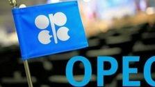 افزایش بیش از 6 دلاری قیمت نفت سنگین ایران/متوسط قیمت نفت اوپک در ماه می به 25 دلار رسید