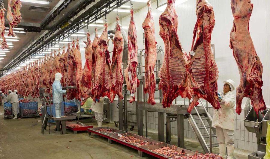 واردات گوشت شدت میگیرد
