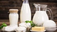 حذف لبنیات از سفره اقشار کم درآمد در پی افزایش قیمت شیر خام
