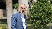 علی اکبر صالحی: با برجام صنعت هستهای نه متوقف و نه کُند میشود / جلسه اول مذاکرات وین مثبت بوده / موضع ایران روشن و اصولی است / اگر آمریکا به برجام برگردد و تحریمها را رفع کند، ایران هم باز خواهد گشت