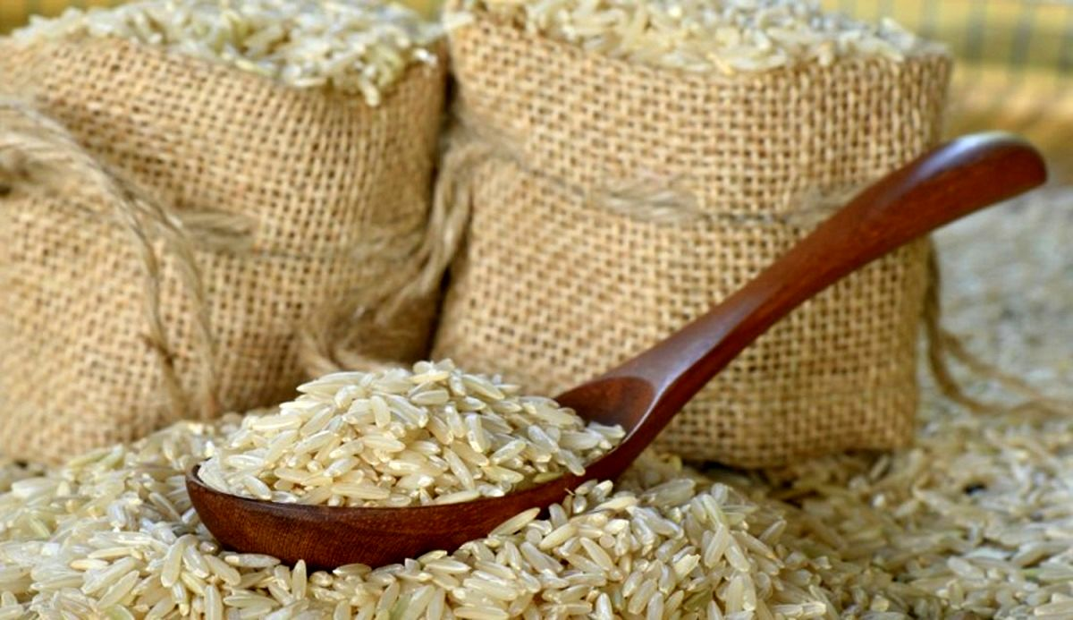 واردات 528 هزار تن برنج به کشور