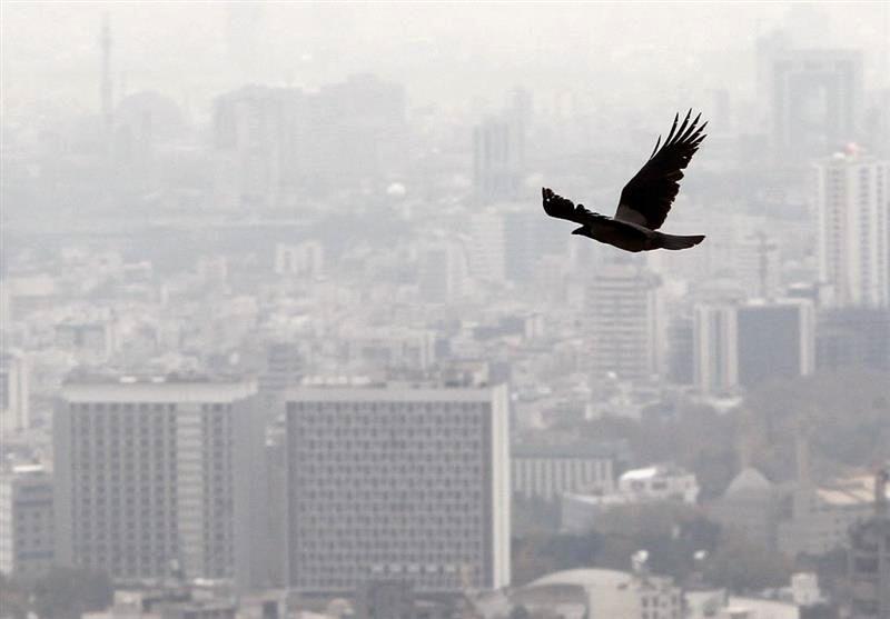 یک نماینده: زلزله تهران، معاملات مسکن را کم میکند/کاهش قیمت مسکن در راه است