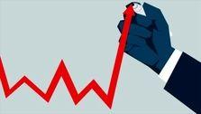 جزئیات آمارهای اعلام شده از تورم کالاها/ کدام گروه ها بیشترین افزایش قیمت را داشتند؟