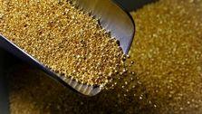 طلای جهانی نزولی شد