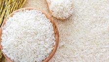 احتمال افزایش قیمت برنج در صورت عدم تخصیص ارز وارداتی