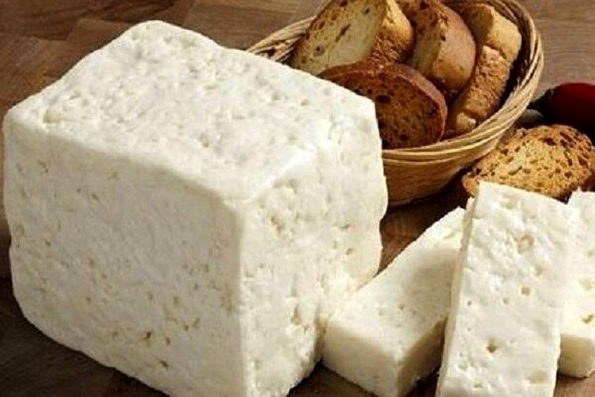 ایران در صادرات پنیر رتبه ۷۶ را کسب کرد
