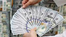 دلار تا شب عید در محدوده قیمتی ٢٥ تا ٣٠ هزار تومان نوسان خواهد داشت
