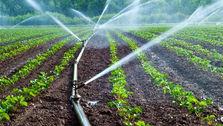 کشاورزی ایران اتاق ندارد!