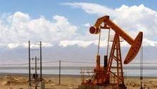 عربستان قیمت نفت خود در بازار آسیا را بیش از ۵ دلار افزایش داد