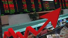 کدام سهامداران بیشتر سود کردند؟