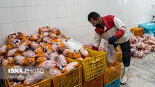 گرانفروشی مرغ ربطی به وزارت جهاد کشاورزی ندارد/ کمبودی در تولید مرغ نداریم